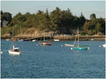 Golfe Morbihan2
