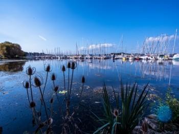 L'estuaire de Vilaine